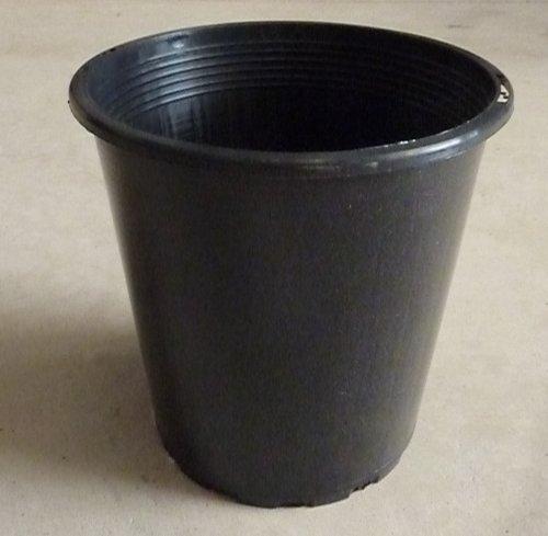 pot 110 x 125 mm orchidaceous supplies. Black Bedroom Furniture Sets. Home Design Ideas